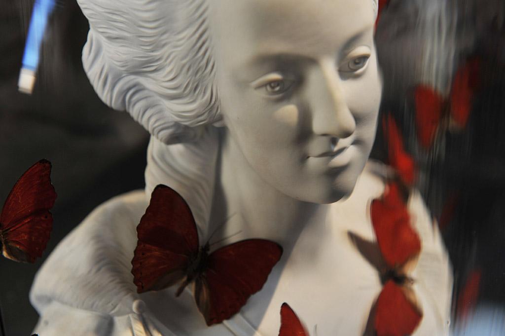 Statue de Marie-Antoinette et papillons sous globe de verre